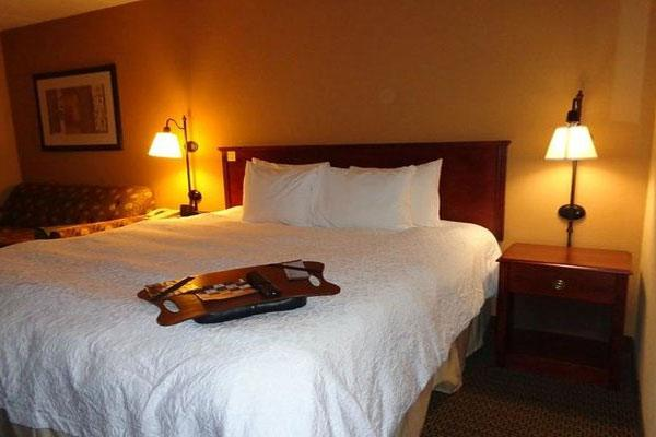 Hampton Inn Lagrange in LaGrange, GA